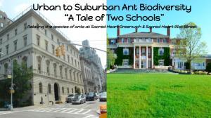 The Ant Biodiversity Investigators